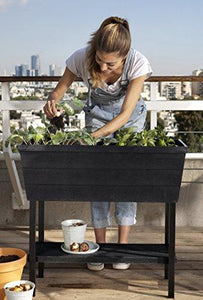 Keter Urban Bloomer 22.4 Gallon Raised Garden Bed with Self Watering Planter Box and Drainage Plug, Anthracite