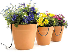 Load image into Gallery viewer, Raindrip R560DP Automatic Watering Kit for Container and Hanging Baskets