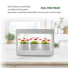 Load image into Gallery viewer, GrowLED Plant Grow Light LED Indoor Garden Light, Kitchen Garden with Timer Function, 24V Low Safe Voltage, Ideal for Plant Grow Novice Or Enthusiasts, Various Plants, DIY Decoration, White Grow Light
