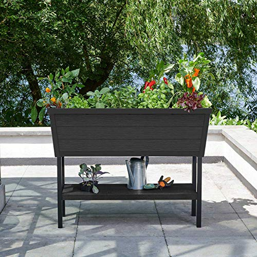 KETER XL Urban Bloomer Resin Elevated Planter Raised Garden Bed
