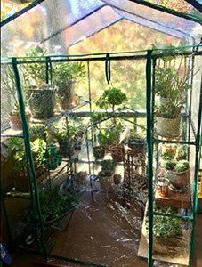 Home-Complete HC-4202 Walk-In Greenhouse- Indoor Outdoor with 8 Sturdy Shelves-Grow Plants, Seedlings, Herbs, or Flowers In Any Season-Gardening Rack