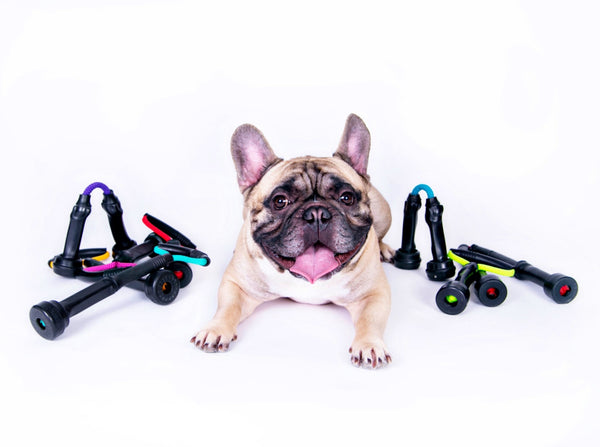 Mootugs™ Dog Pull Toy