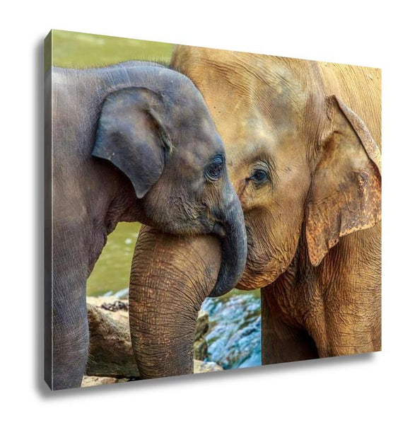 Gallery Wrapped Canvas, Elephant And Baby Elephant - customgiftstore.com