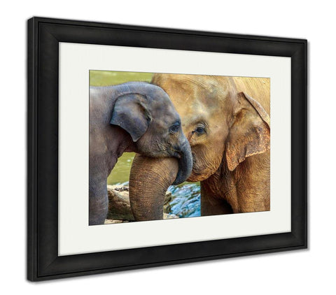 Framed Print, Elephant And Baby Elephant - customgiftstore.com