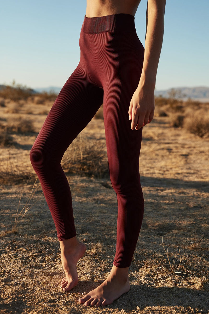 RISHI SEAMLESS HIGH WAIST LEGGING