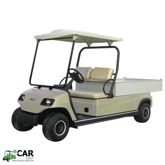 LT-A2.H8 - 2 Seat Utility Long Wheel Base Electric Cargo Commercial Cart Buggy