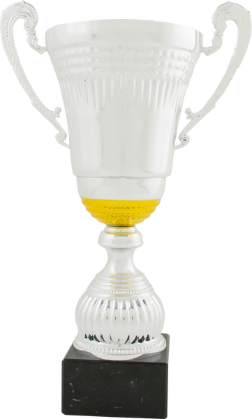 0119-2701 WoW - Silver and gold cup with metal handles