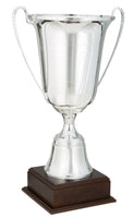 0119-6500 Phénicia - Silver trophy cup with lid on wood base
