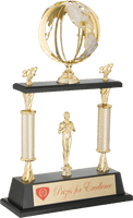 0119-7000 ML - Gold and silver world globe trophy cup on set wood base