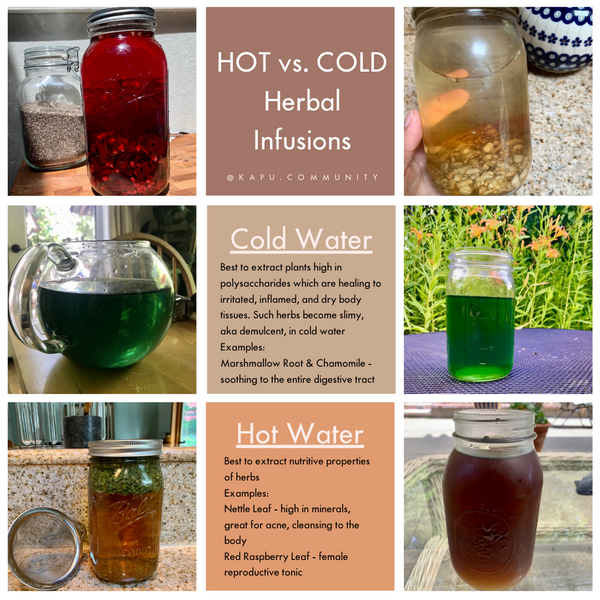 hot and cold herbal infusions