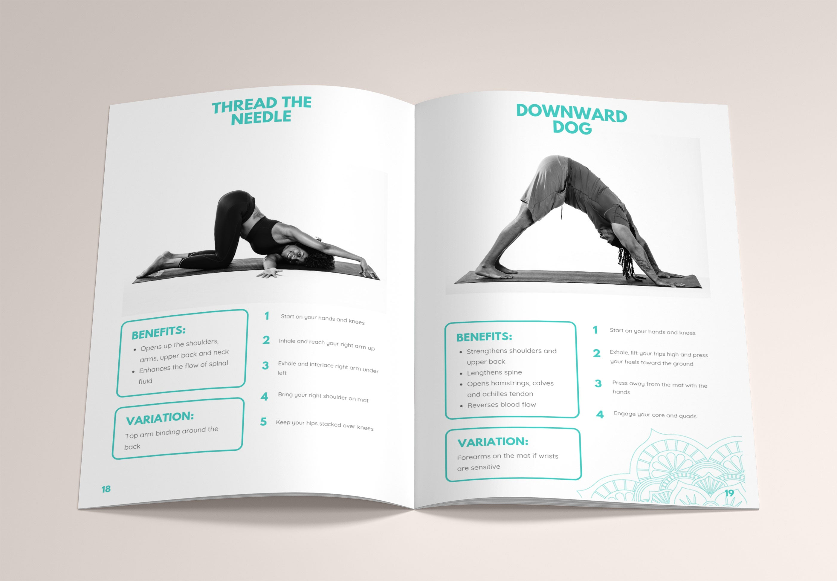 The Beginner's Guide to Yoga, Digital