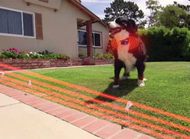 Electric Dog Wireless Invisible Fence