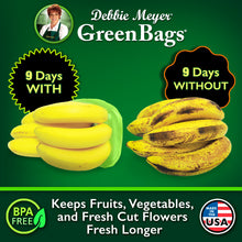 Load image into Gallery viewer, Debbie Meyer® GreenBags® | 10pc 5 Med., 5 Lrg.