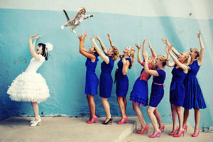 WEDDING INSPO // The top 10 best wedding guests (Hint: they aren't human)