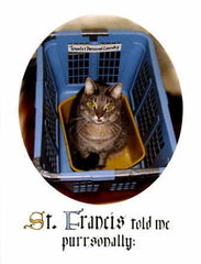 BD-256 St. Francis told me