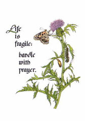 BN-259 Life is fragile: