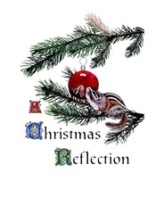 C-723  A Christmas Reflection