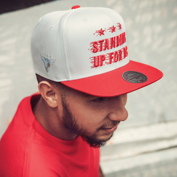 "Baseball Cap ""Standing Up for DC"""