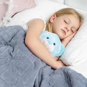 Kids Weighted Blanket With Cover