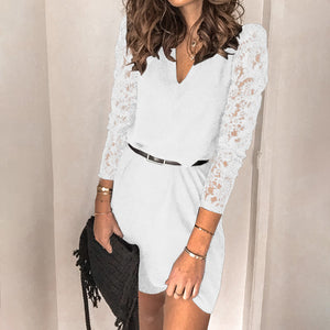 Women Paneled Lace Long Sleeve Dress
