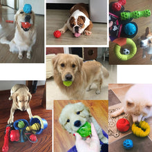Load image into Gallery viewer, Squeaking Bouncing Ball Durable Floatable Springy Pet Toys