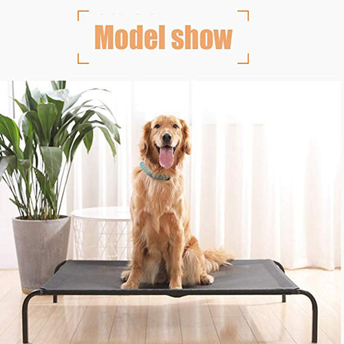 Comfortable Elevated Dog Bed Indoor and Outdoor