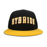 'Hybrids' Snap Back (Black & Gold)
