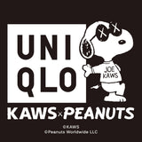 'Kaws x Peanuts Toy' Large (Collectible)