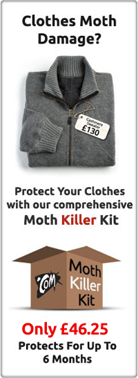 Clothes Moths Kill Moths Moth Control Mothprevention