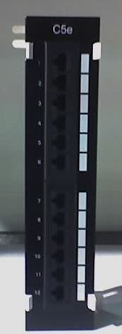 OEM 12-port Patch Panel (populated Cat 5e) Wall