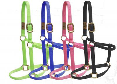 Accent Nylon Halter - 21200