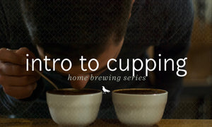 Coffee Cupping, what is it really for?