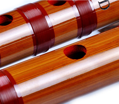 Buy Professional Level Chinese Bitter Bamboo Flute Dizi Instrument with Accessories