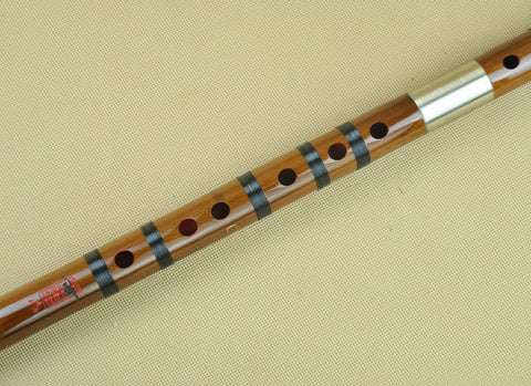 Buy Concert Grade Bitter Bamboo Flute Chinese Dizi Instrument with Accessories 2 Sections