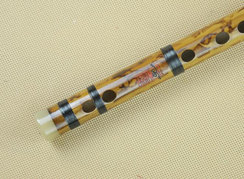 Buy Professional Chinese Bitter Bamboo Flute Dizi Instrument with Accessories 2 Sections