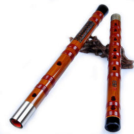 Kaufen Acheter Buy Professional Level Chinese Bitter Bamboo Flute Dizi Instrument with Accessories