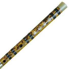 Kaufen Acheter Buy Professional Chinese Bitter Bamboo Flute Dizi Instrument with Accessories 2 Sections
