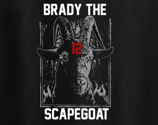 Tom Brady the Scapegoat Patriots Superbowl tee t-shirt