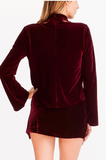 Velvet Choker Top With Bell Sleeve, OLIVACEOUS, Top - Bobbi Rocco
