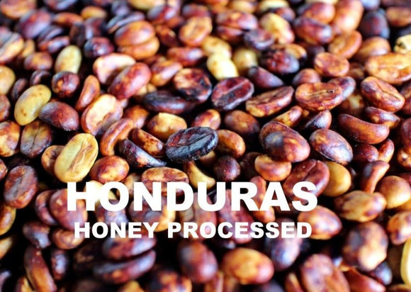 HONDURAS - HONEY PROCESSED