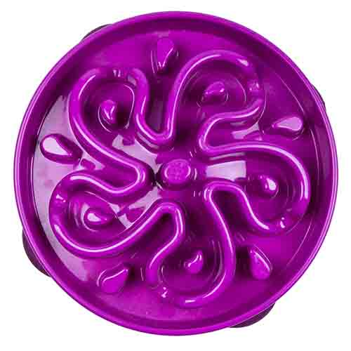 Outward Hound Fun Feeder Slo-Bowl Slow Feeder Purple