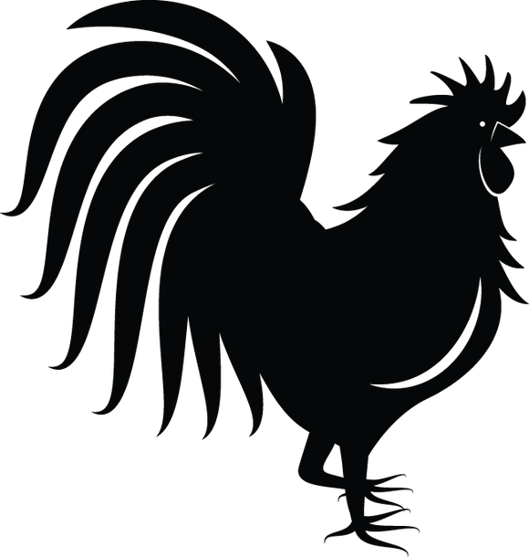 364RA - Rooster