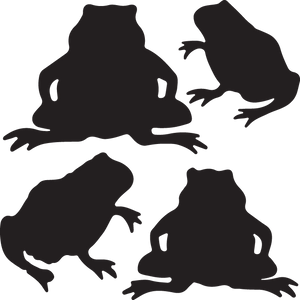 611 frogs  (toads)