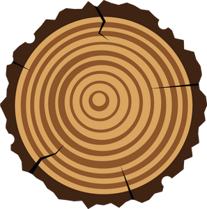 699 graphic illustration - cross-cut tree rings