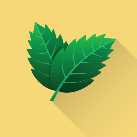 725 leaves icon