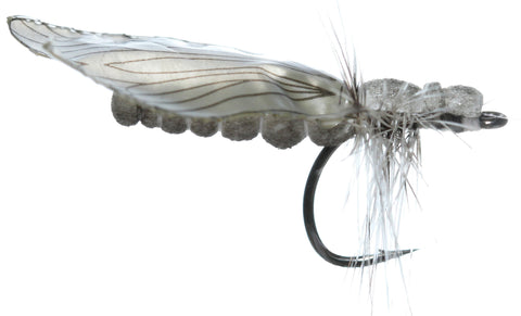 Superflies: Caddis Adult - Ash Gray