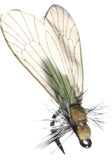 Superflies: Caddis Adult - Saffron Gold