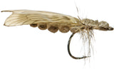Superflies: Caddis Adult - Vanilla