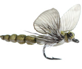 Superflies: Mayfly Spent - Olive Gray