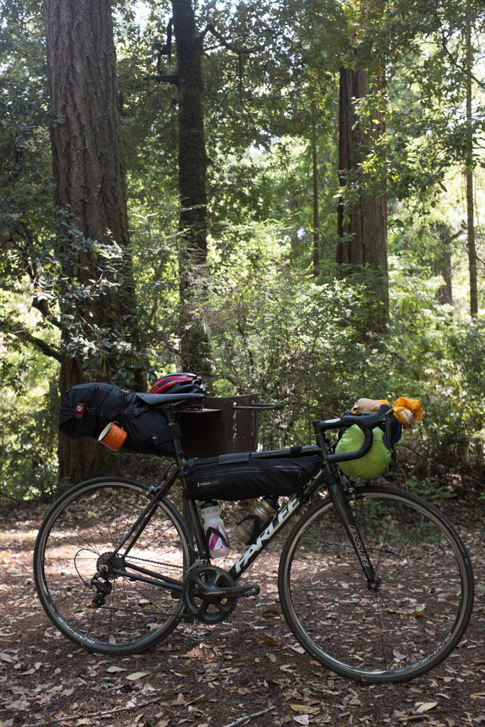 Bike camping redwoods